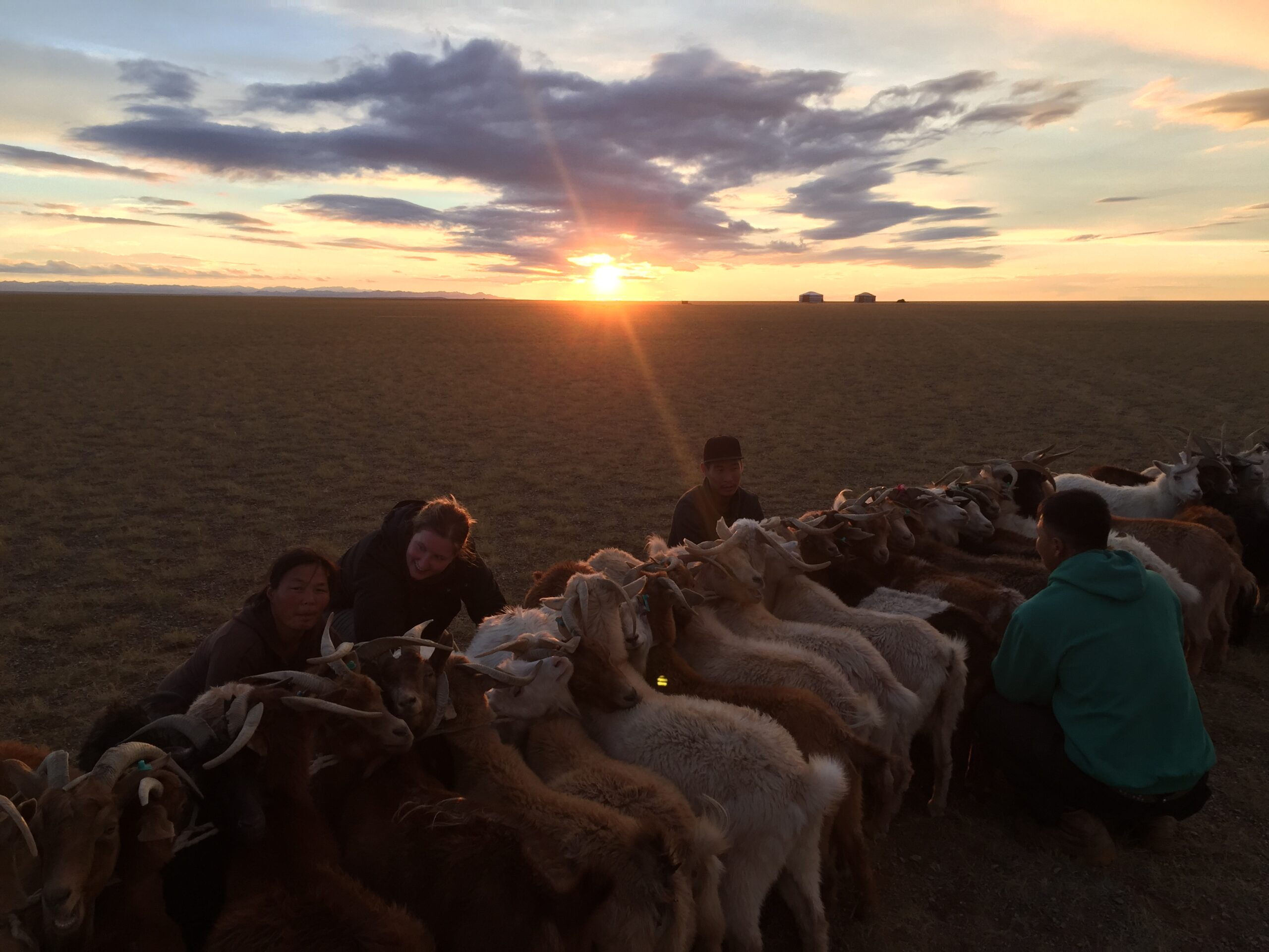Mongolie, séjour personnalisé