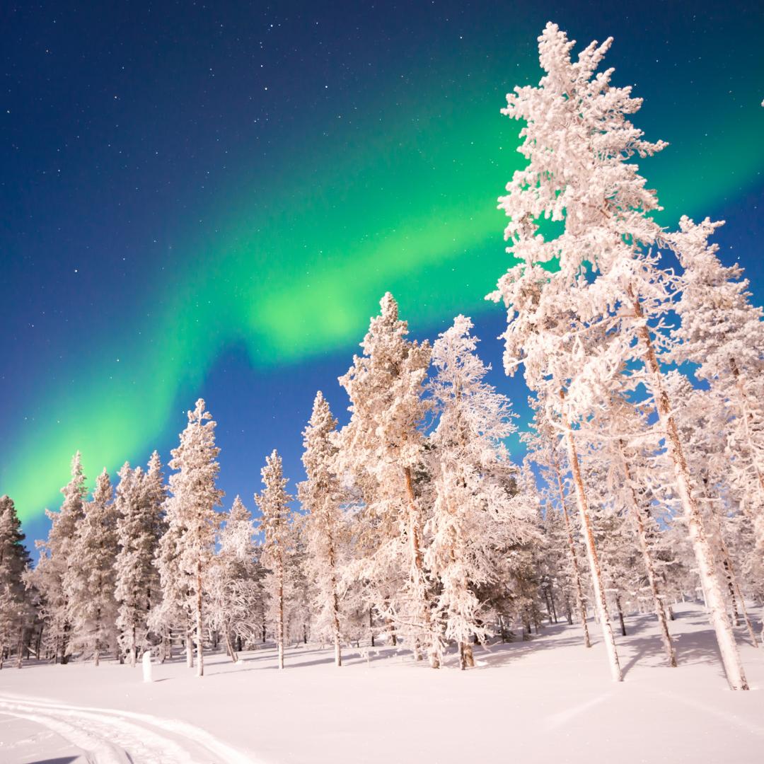 Voyage en Laponie, Salmon Voyages, coup de coeur voyage