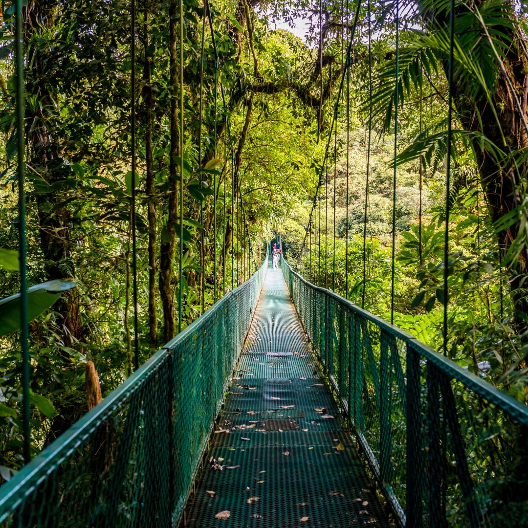 Voyage au Costa Rica, Salmon Voyages, coup de coeur voyage